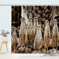 Meerkat-Family-On-the-Lookout-Shower-Curtain