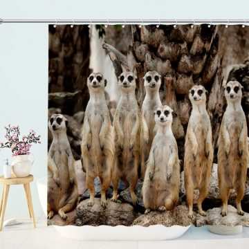 Meerkat Family On the Lookout Shower Curtain